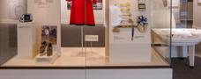 Museum Vitrine Case